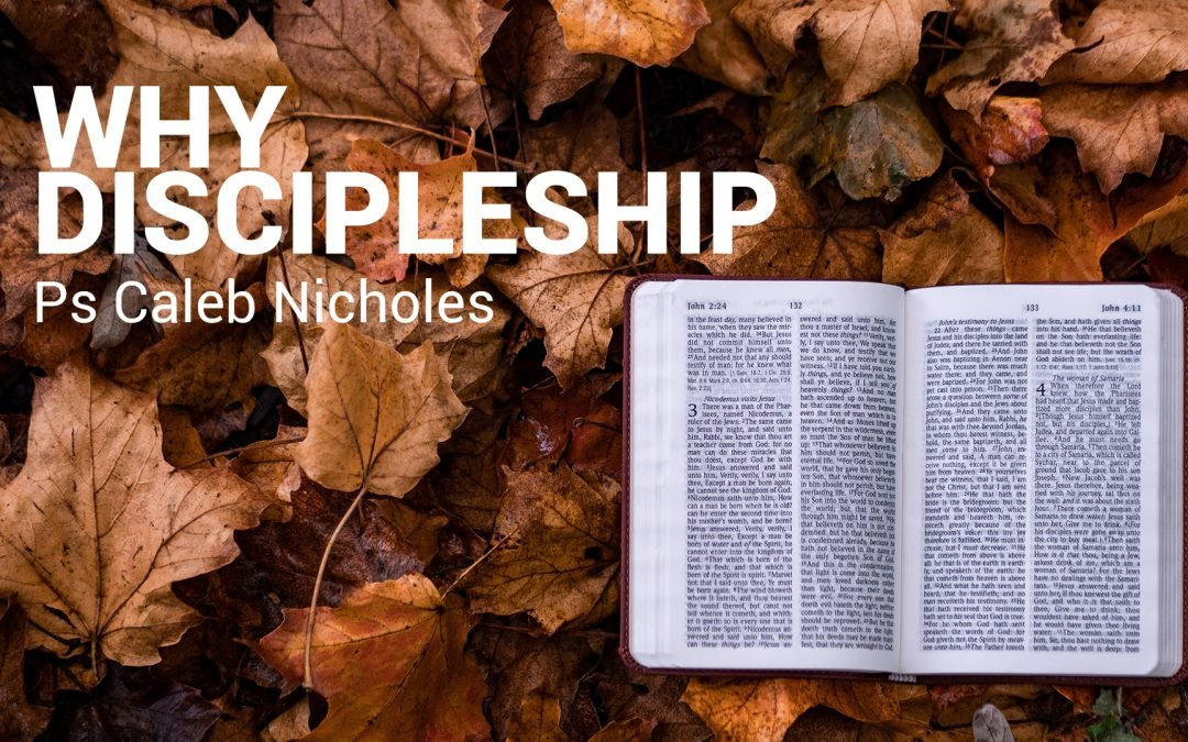 Why Discipling?